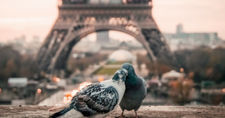 7 Experiences For Two Which Make The Perfect Valentines Gift